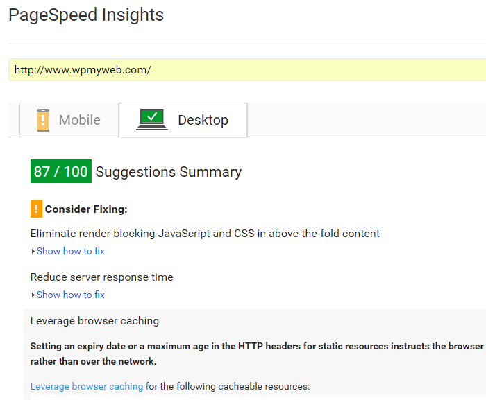 Google PageSpeed Test
