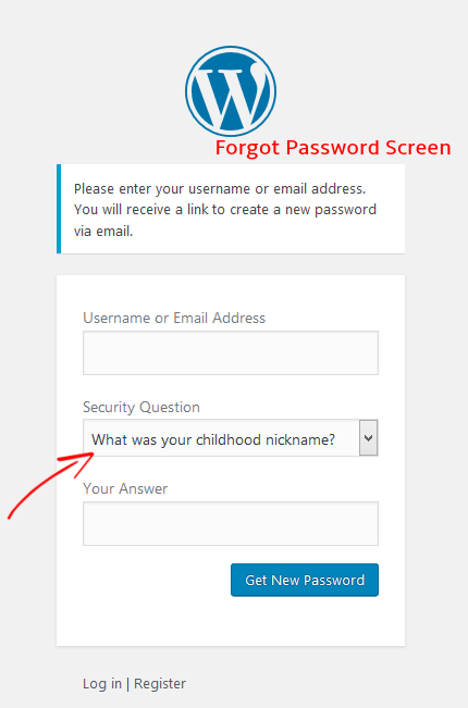 WP Security Lost Password