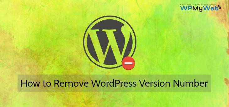 Remove WordPress Version