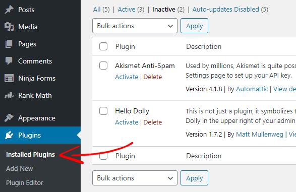 WordPress Delete Plugin