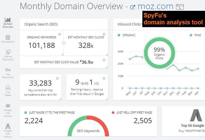 SpyFu's SEO Domain Analysis Tool